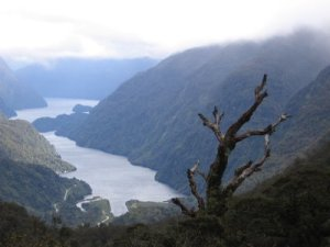 Doubtful sound trip 182