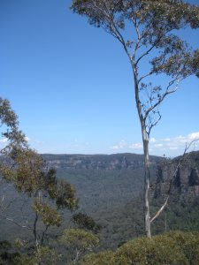 Here's the Blue Mountains.