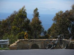 Rental bike: Check
