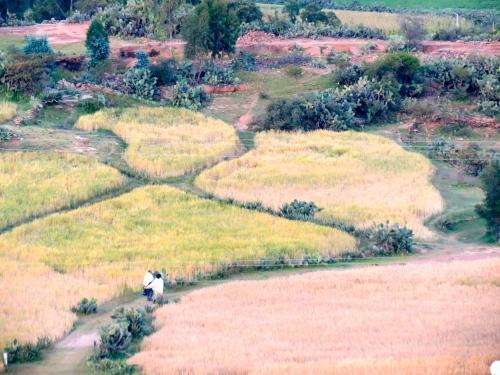 Tigray, Ethiopia. Photo by me.